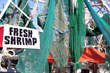 Crowd Pleasing 21st Annual Beaufort Shrimp Festival Set for October 2-3, 2015 in the Lowcountry