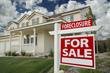 Advantages & Disadvantages Of A Foreclosure Property