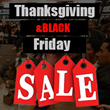 2014 Web Hosting Promotions for Thanksgiving and Friday Introduced by...