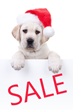 Big Christmas Sales Begin Today at Sublime Beauty® for all...