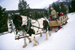 Sleighing & Sleigh-cation Package at 320 Guest Ranch, Big Sky, Montana