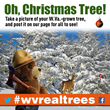 Forestry officials encourage people to post pictures of their W.Va.-grown trees to www.facebook.com/wvforestry, or tweet them to @wvforestry using #wvrealtrees.