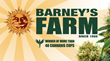 Barney's New Medical Seeds Available to Patients