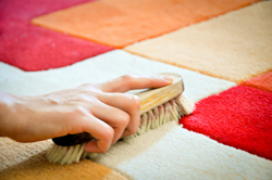 spot cleaning carpet