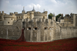 Fastlane International says Tower of London poppy mailing woes...