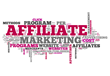 Affiliate Management Agency Experience Advertising Has Been Selected...
