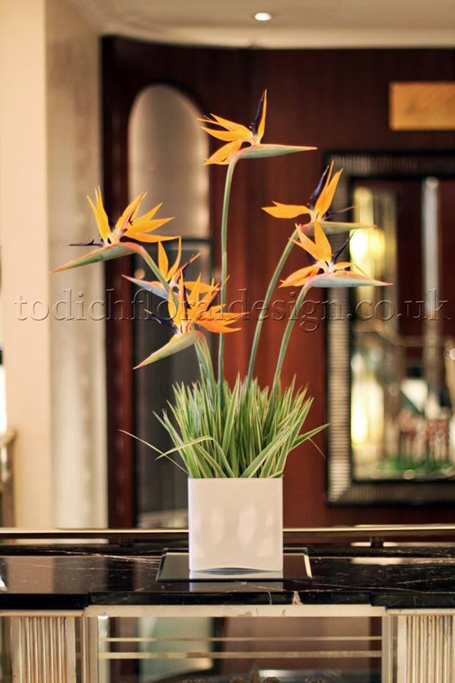 Emotional Power Of New Hotel Floral Arrangements By London Florist Todich Floral Design
