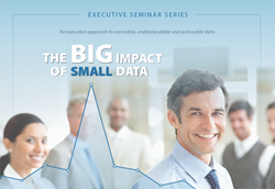 Small Data Executive Series