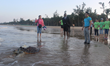 Captive-reared Sea Turtle Swims Back Into The Wild