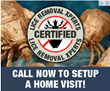 All-Natural Florida Lice Removal Company Opens New Lice Treatment...