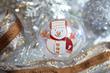 SnowPage Ornament