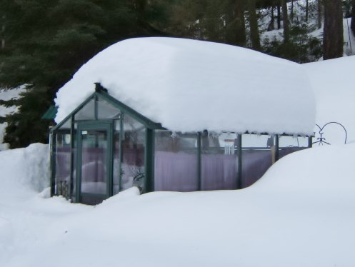 Bc Greenhouses Offers Tips On How To Maintain Heat In Your