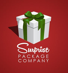 surprise package company