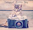 Santa Is Calling All Kittens! National Kitten Day is Thursday,...