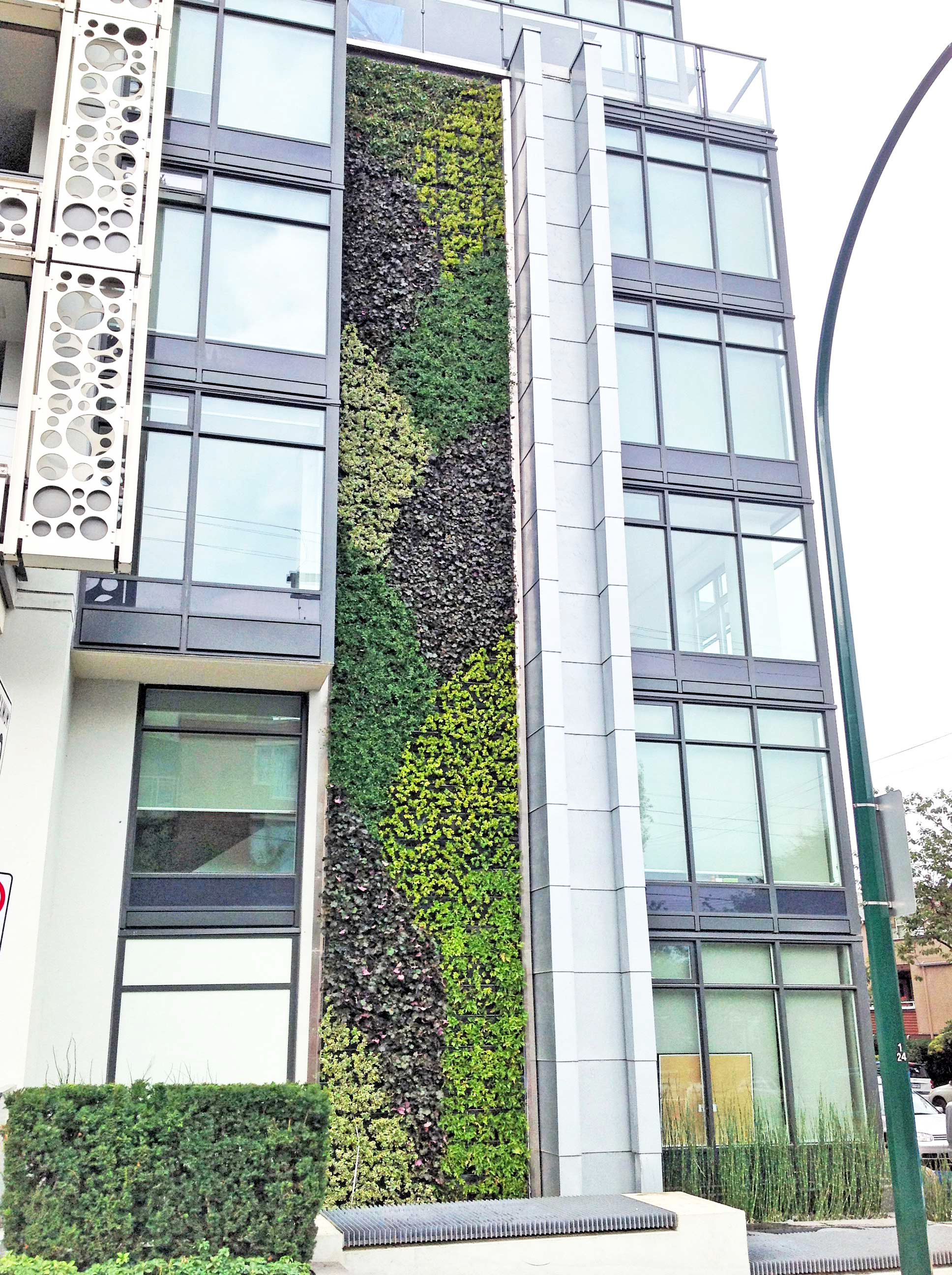 New Gsky Green Wall Beautifies West Vancouver