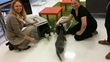 Animal Shelter Director, Darcy Andrade and Planet Tails Cat Cafe' owner, Ericka Basile, release the first cats into the cat cafe'.