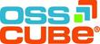 CIOsynergy Announces OSSCube as Platinum Sponsor For Dallas Event.