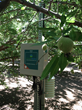 ClimateMinder Soil and Weather Station