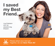 Lisa Edelstein 'I Saved""