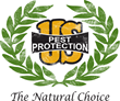 "New Episode of U.S. Pest's ""The Lovely Insect Show"" All About Spiders"