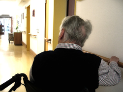1 in 5 Nursing Home Residents Abused