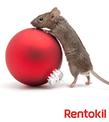 Pest prevention tips from Rentokil