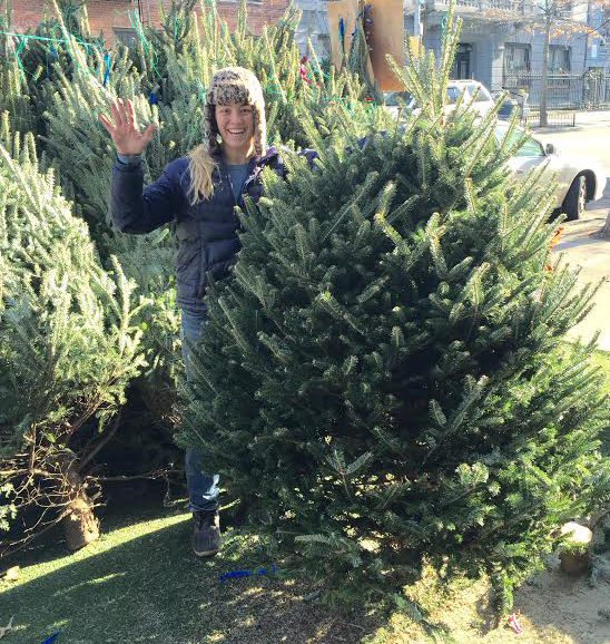 Christmas Tree For 2014: Christmas Tree NYC: Order A Christmas Tree Online And Get