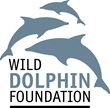 WIld Dolphin Foundation: Education, Conservation, Advocacy