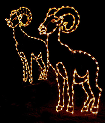 The 19th Annual Wild Lights Event scheduled through New Year's Eve at the Living Zoo in Palm Desert