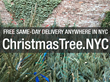 Christmas Tree NYC Offers Last-minute Christmas Tree Shoppers Same-day...