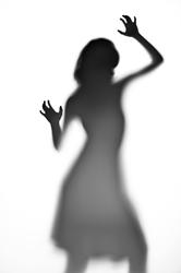 Savage Universal Introduces Exclusive Translum® Photo Backdrop...