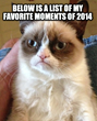 Memes Are Still Strong in 2014 & Set To Blow Up In 2015 With New...