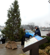 Hopewell/Prince George Chamber lights Christmas tree to remember Christmas Truce of 1914
