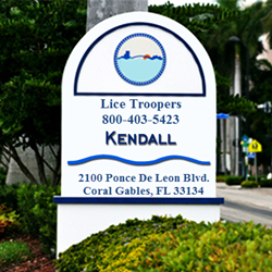 Kendall Lice Removal