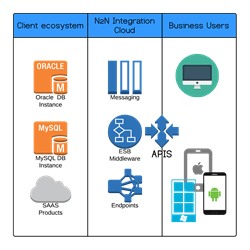 N2N Integration cloud (NIC)