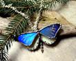 Women's Full Blue Butterfly Necklace, from Debra's Divine Designs.
