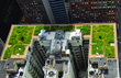 The Commercial Roofing Experts Announces New Green Roof Services to...