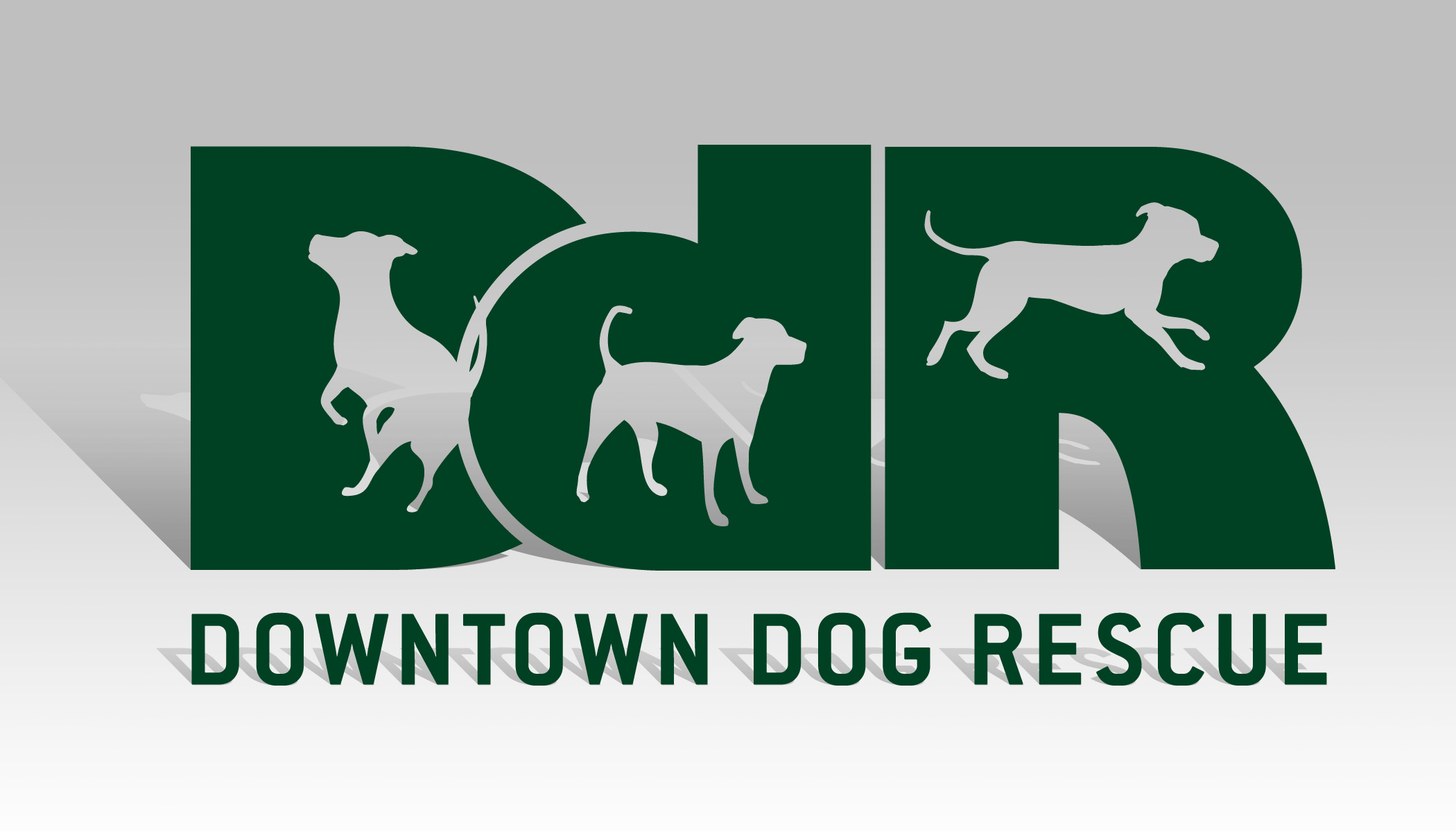 Permalink to Top Ten Cute Downtown Dog Rescue