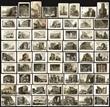 Collection of Sixty-four Piranesi prints