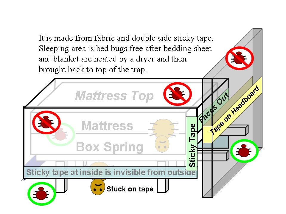 Bed Sized Bed Bug Trap LLC has invented an innovative trap