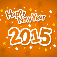 Web Hosting Sales - New Year 2015