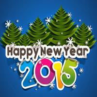 New Year 2015 - Web Hosting Deals