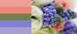 Wedding colour schemes and ideas for 2015 Blue Waterermelon Pink Orange