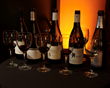 Guests at the 2015 NYC Winter Wine Festival at the Best Buy Theater on February 7th can enjoy tasting250+ Wines, live contemporary jazz from Grammy nominees Special EFX, light accompaniments, plus a custom glass to take home.