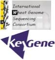 IWGSC & Keygene logos