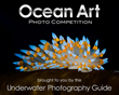 Ocean Art Logo