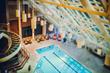 Sheraton Tysons Hotel - indoor pool