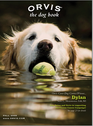 Dylan, a canine cancer survivor, was the first winner of the Orvis Cover Dog Photo Contest. The contest has raised over a million dollars for canine cancer research.
