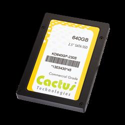 Secure SATA III SSD