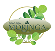 Dead Sea Moringa, My Olive Tree, nutritional supplements, nutritional Products international